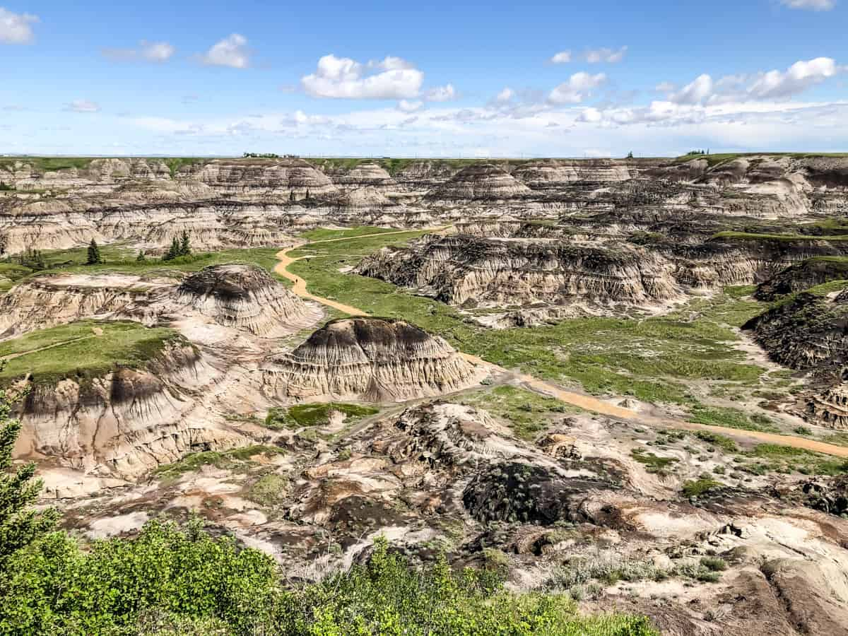 a view down into Horseshoe Canyon (along the Dinosaur Trail)