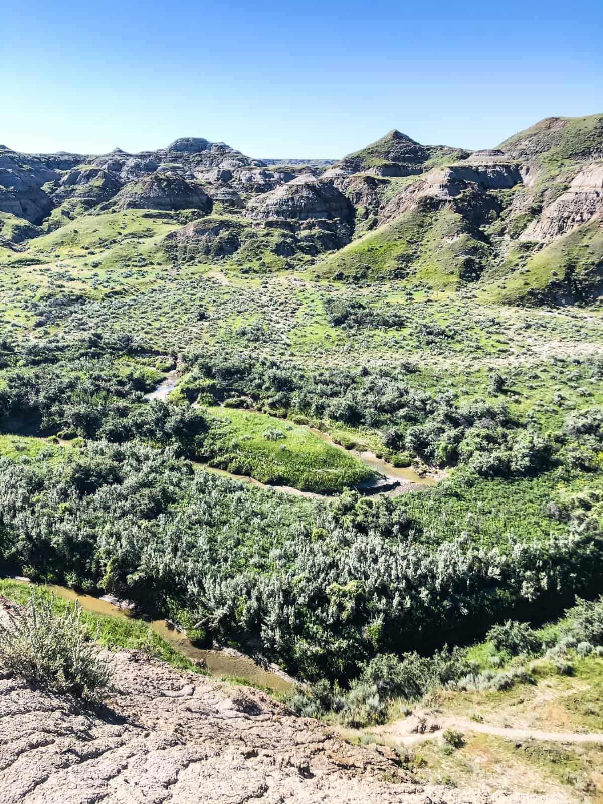 A view of lush green river valley among hoodoos
