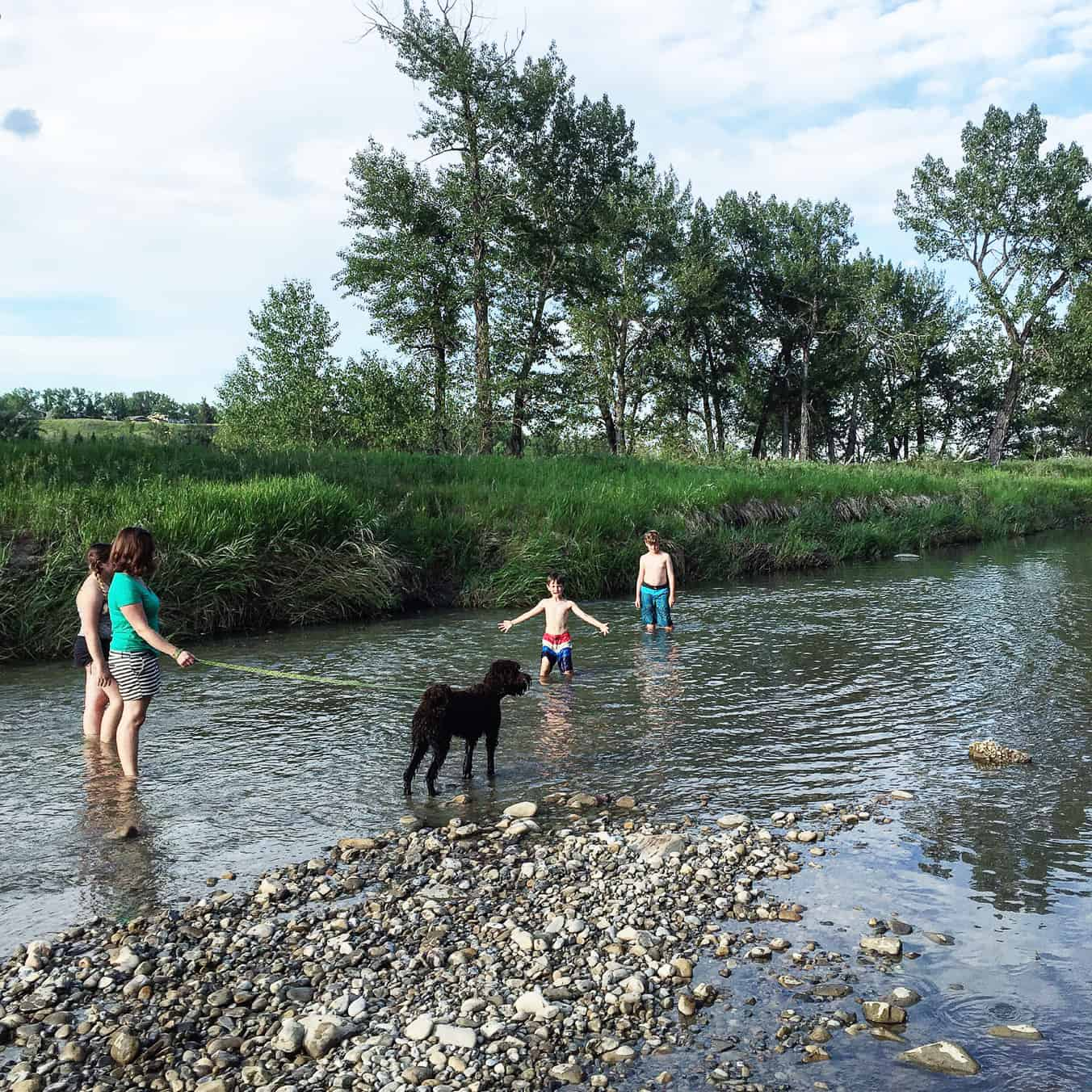 7 Reasons to Visit Fish Creek This Summer!