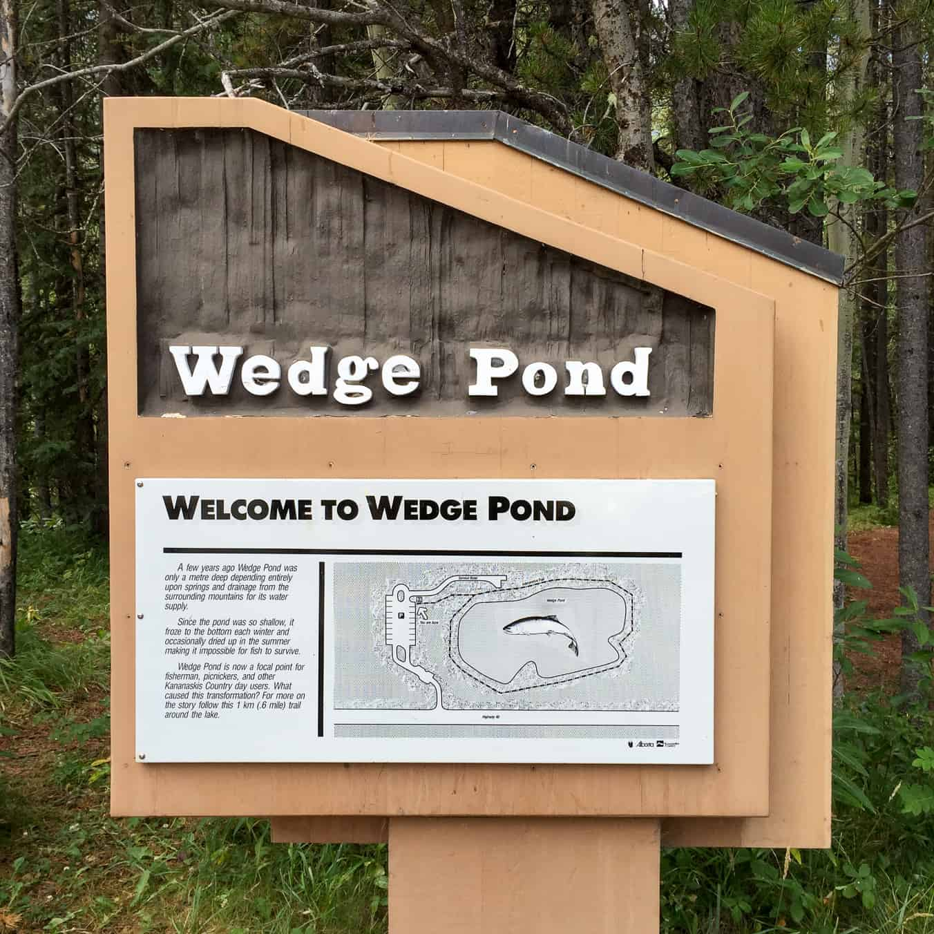 Wedge Pond