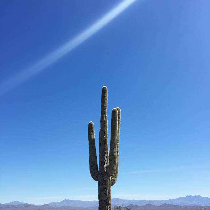 McDowell Mountain Regional Park, The North Trail Self Guided Tour