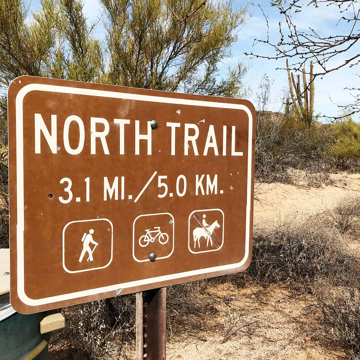 North Trail Self Guided Tour in McDowell Mountain Regional Park, Arizona