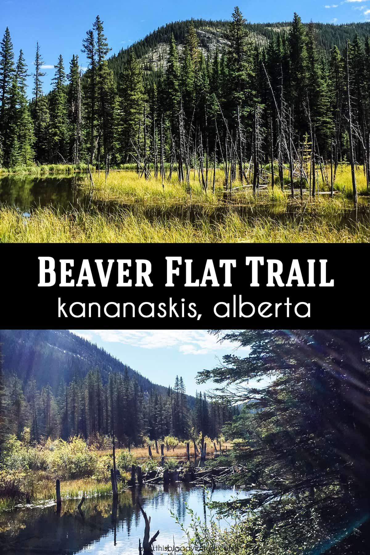 Beaver Flat Trail, Kananaskis