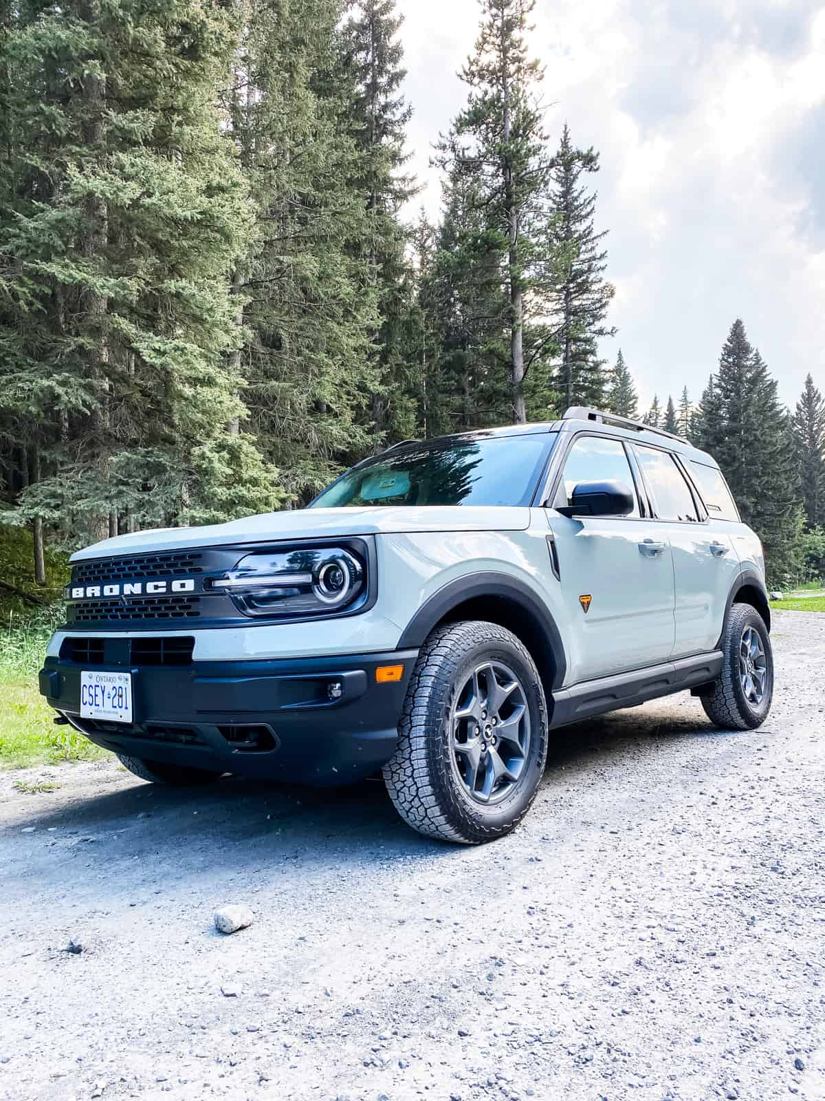 the Ford Bronco Sport in Cactus Grey